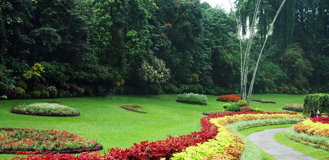 kandy_botanical_gardens